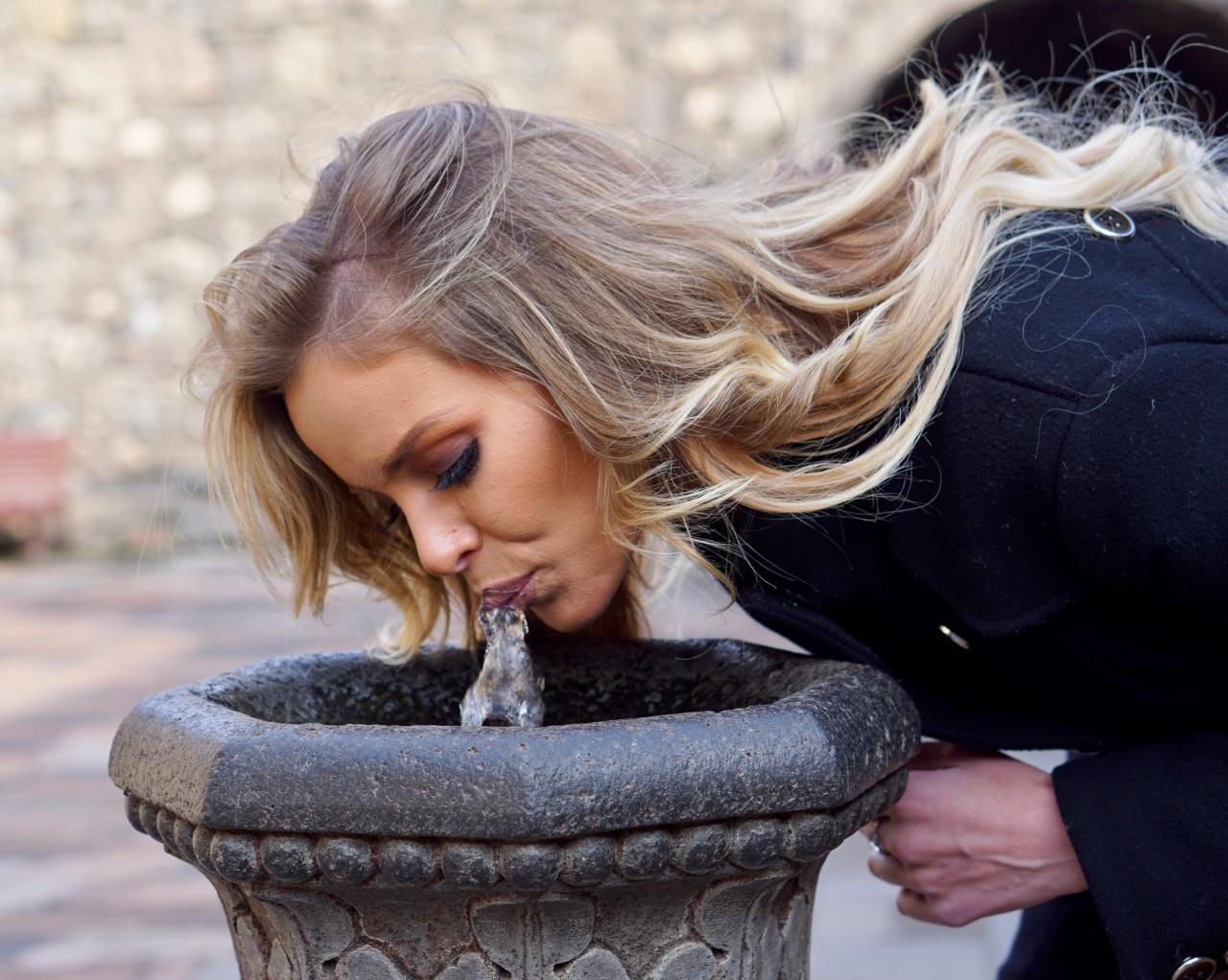 You must drink from the drinking fountains, the water is the best in the world according to the Armenians.